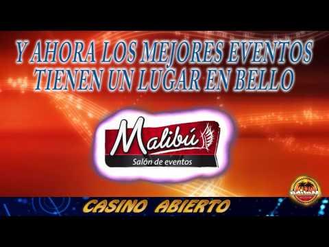 casino malibu diciembre 01