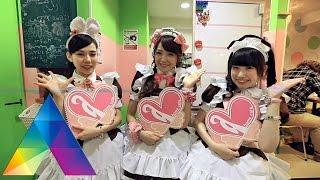 CELEBRITY ON VACATION - Petualangan Kevin Julio Bersama Member JKT48 Di Tokyo (20/02/16) Part 1/3