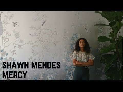 Shawn Mendes - Mercy (Acoustic Cover) By...