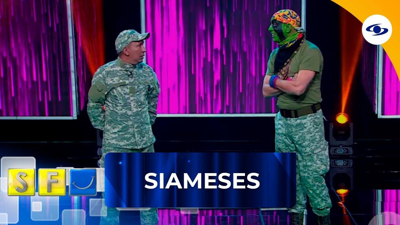 Download Al grupo de los Siameses llegó un nuevo soldado, no te pierdas quién es - Sábados Felices
