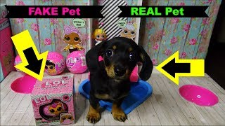 FAKE LOL Surprise Pets Series 4 wave 2 Biggie Pets Eye Spy Series 5