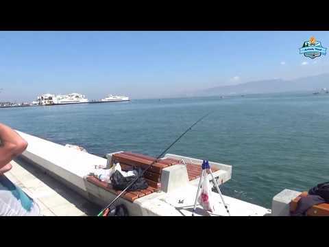 İzmir Kıyıdan Çuprayı Bulduk Arkadaşlar. Yılan Dili Yapımıda Videoda ;) - 01 Haziran 2017