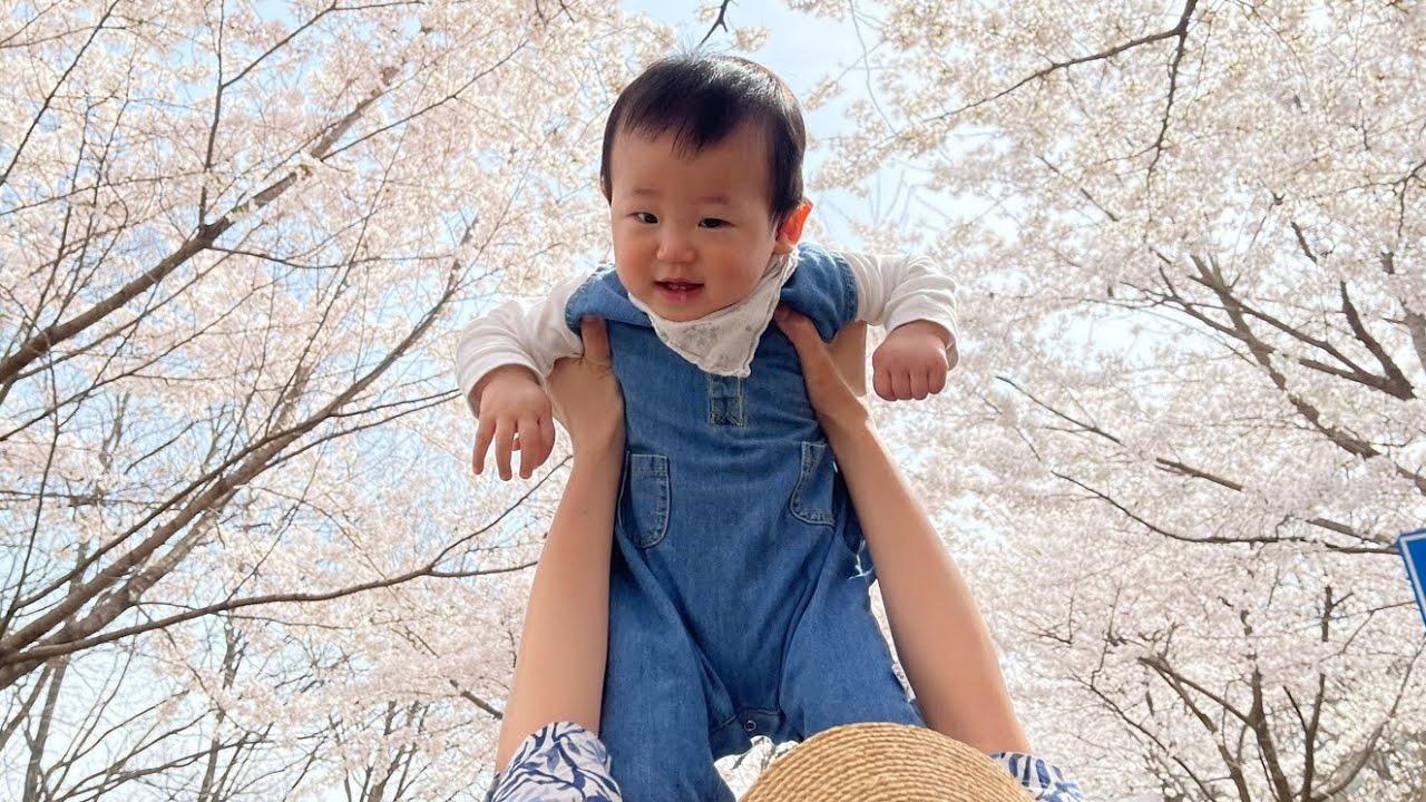 처음 봄을 맞이 한 10개월 아기 | 산책하다 자연인이 된 아기 | 친구랑 벚꽃놀이 | 친구가 집에 놀러와서 초 흥분상태