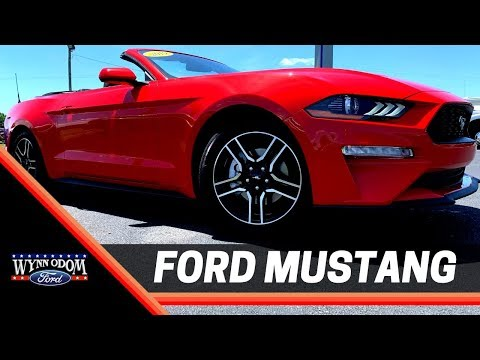 😎 NEW 2019 Ford Mustang Convertible Race Red | Wynn Odom Ford