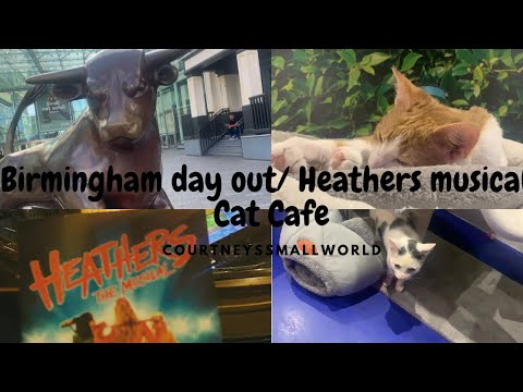 Post Covid Theatre trip to see Heathers!/ Cat Cafe/ Birmingh