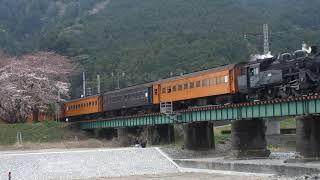 【さくら号HM付き】大井川鉄道SLさくら号 家山鉄橋にて