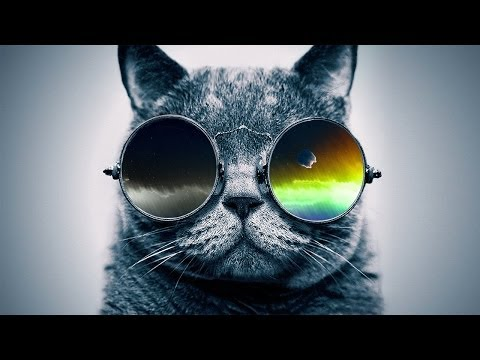 "Funky Rap / Hip-Hop Instrumental - ""Cool Catz"" 