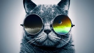 "Funky Rap / Hip-Hop Instrumental | Jazzy Guitar Beat ""Cool Catz"" 