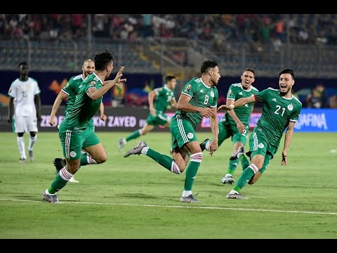 Best Moments Algeria ● CAN 2019