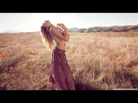 David Guetta feat Sia - Titanium (Sergio T Bootleg) [HD]