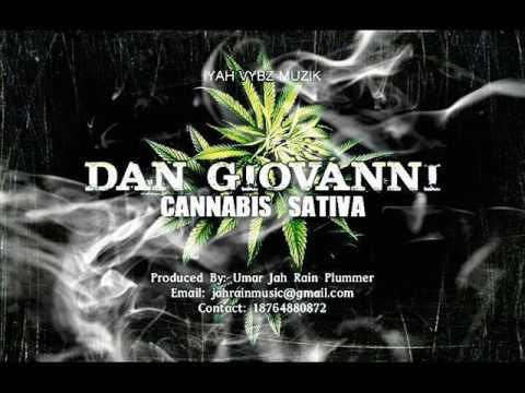 Dan Giovanni - Cannabis Sativa [L-Stitch Clarks   Iyah Vybz Muzik] Reggae