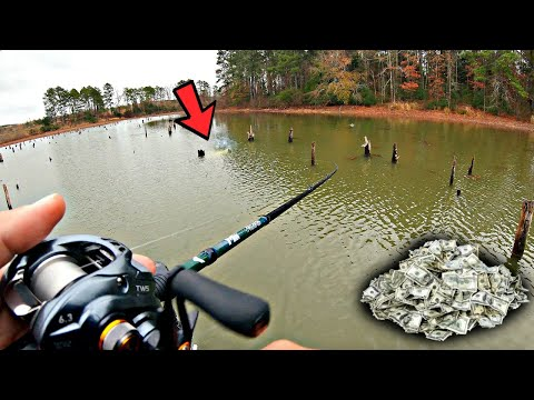 ULTIMATE YouTube Fishing Tournament Vs. Pro Fisherman!!! (HIGH STAKES)
