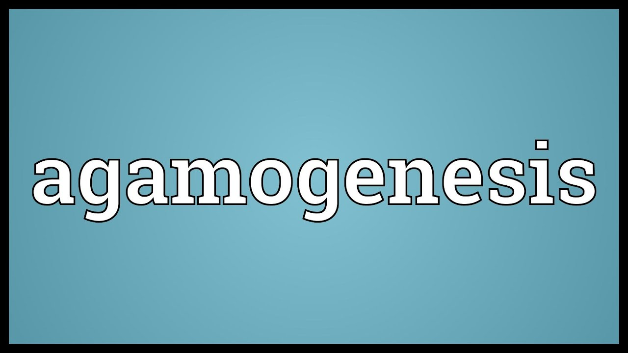 Agamogenesis asexual reproduction video