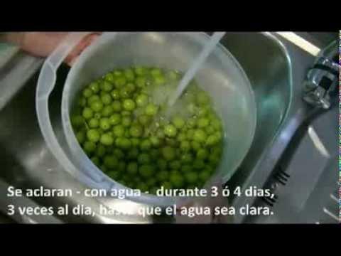 Aceitunas sosa caustica receta