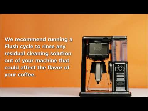 Descaling Your Ninja Coffee Bar® System (CF090 Series - 1 Hour Cycle)