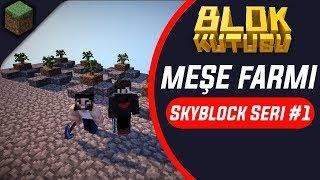 Blokkutusu Skyblock Seri #1 Meşe Farmı 🌖