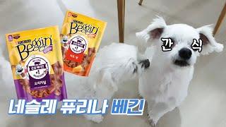 [BUY&EAT] 리얼 베이컨으로 만든 강아지 …