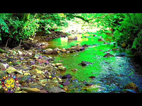 Relaxing Gentle Flowing Water Stream - Babbling Brook Nature Sounds - 4K