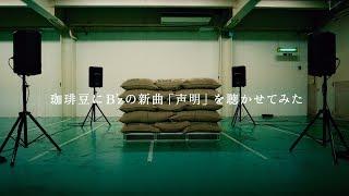 53rd Single「声明 / Still Alive」 2017.6.14 Release ☆声明:UCC BLAC...