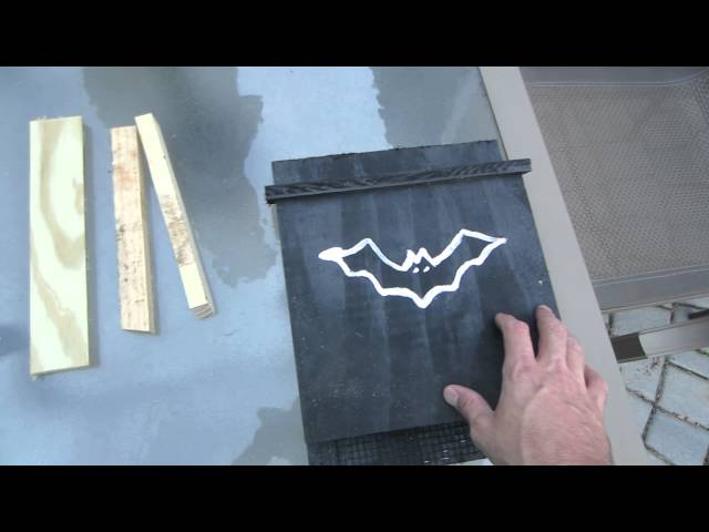 Build a bat house and KILL mosquitos - Boy Scout project!!!