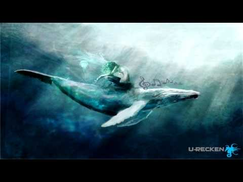 U-Recken - Whale Song