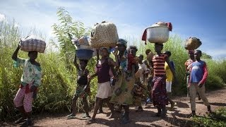 Central African Republic: Thousands forced to flee, health facilities looted