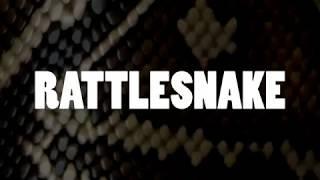 Farm - Rattlesnake (Lyric Video)