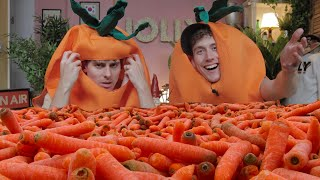 I Spent 6 Moฑths Preparing a Carrot-Holiday🥕