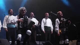 Treixadura en Lugo (San Froilán 2017)