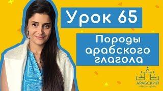 Урок № 65 Породы арабского глагола  فَعَّال