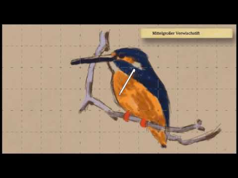 Art Academy: Atelier - Bild 14. Der warme süße Eisvogel!