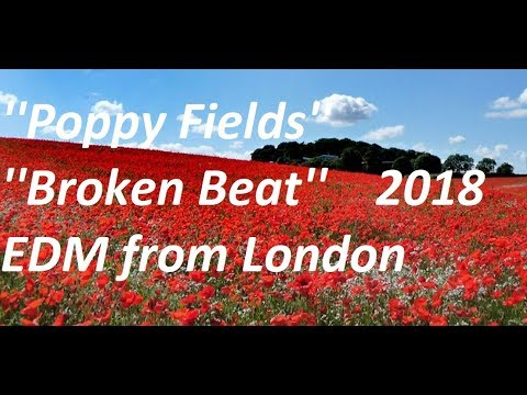 ''Poppy Fields - Broken Beat'' - Variant 2 - EDM from London 2018.