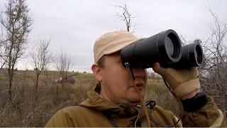 #11 Ходовая Охота Осенью. Курцхаар