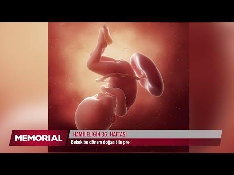 Hamileliğin 36. haftasında neler oluyor?