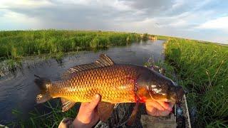 В дикие заповедные места, на рыбалку. Рыбы все больше и больше.