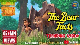 Jungle book Hindi The Bear Facts