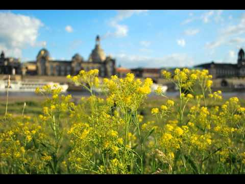 From Dresden.wmv