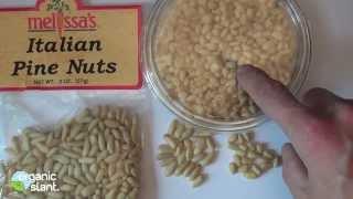 Pine nut syndrome, Pine mouth 11-29-2013 | Organic Slant