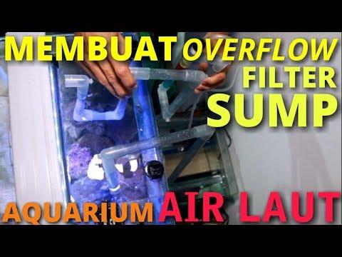 CARA MEMBUAT OVERFLOW FILTER SUMP AQUARIUM AIR LAUT SEDERHANA