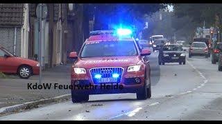 (NEU) KdoW Freiwillige Feuerwehr Heide Audi Q 5 2.0 TDI Quattro STronic