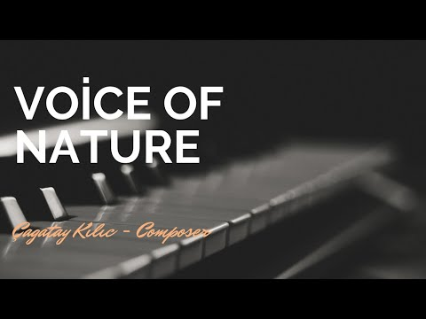 Celtic Dream - Voice of Nature