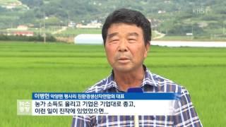 남아도는 쌀…가공식품이 대안이다