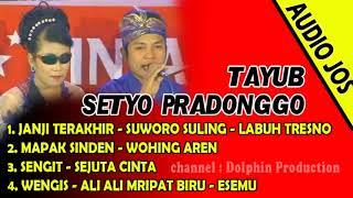 Download Lagu ALBUM TAYUB SETYO PRADONGGO - KUMPULAN GENDING TAYUB TEROB PILIHAN mp3