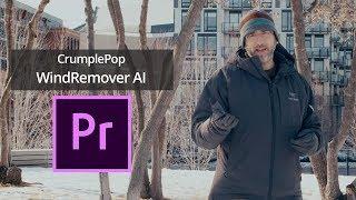 Remove Wind Noise in Premiere Pro Tutorial