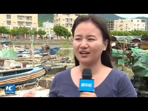 Tropical storm Pakhar strikes Guangdong, China