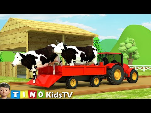 Farm Animal Houses Construction For Kids | Mini Excavator & Construction Trucks For Children