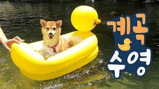 Summer Holiday [Shibainu Gom& Taeng]