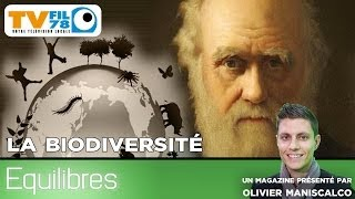 Equilibres – La biodiversité