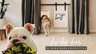 DIY Doggy Door | Mini Sliding Barn Door Style!