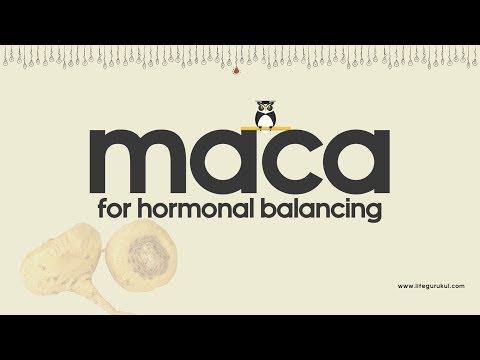 Maca helps balance hormones